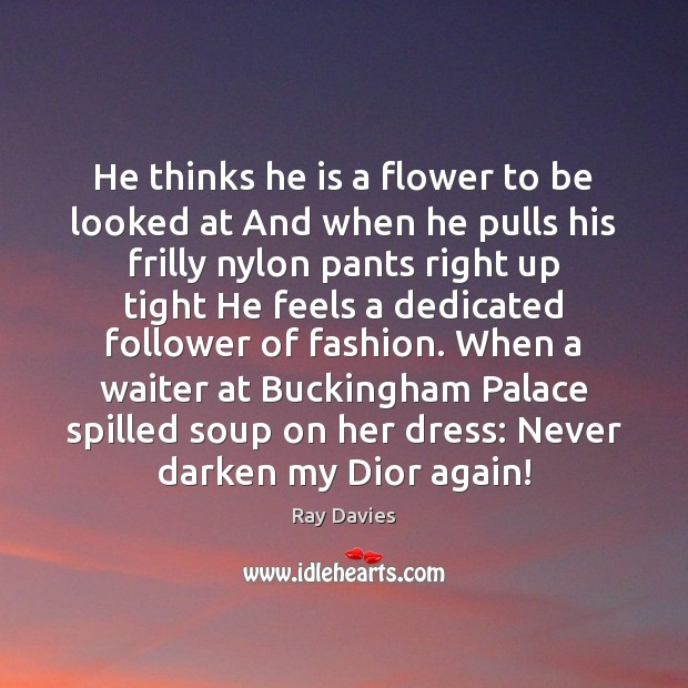 He thinks he is a flower to be looked at And when Ray Davies Picture Quote