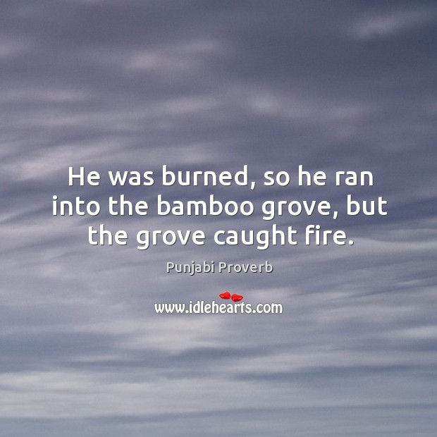 He was burned, so he ran into the bamboo grove, but the grove caught fire. Punjabi Proverbs Image