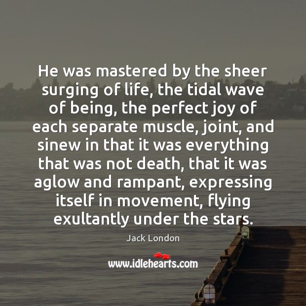He was mastered by the sheer surging of life, the tidal wave Jack London Picture Quote
