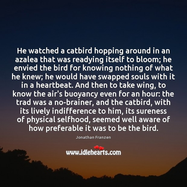Image, He watched a catbird hopping around in an azalea that was readying
