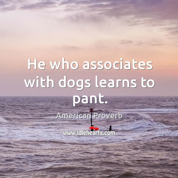 He who associates with dogs learns to pant. American Proverbs Image