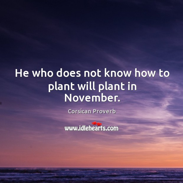 Image, He who does not know how to plant will plant in november.