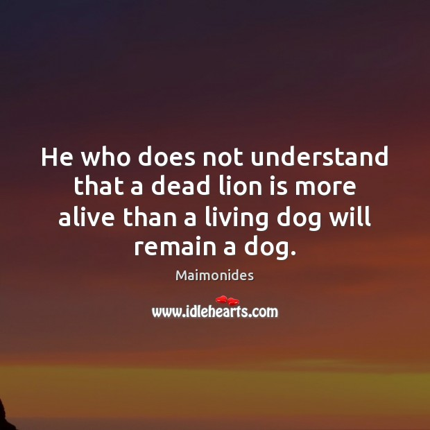 He who does not understand that a dead lion is more alive Image