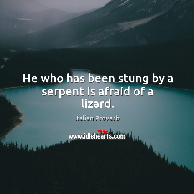 Image, He who has been stung by a serpent is afraid of a lizard.