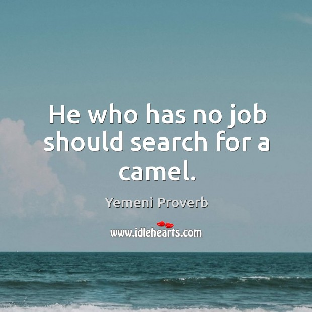 Image, He who has no job should search for a camel.