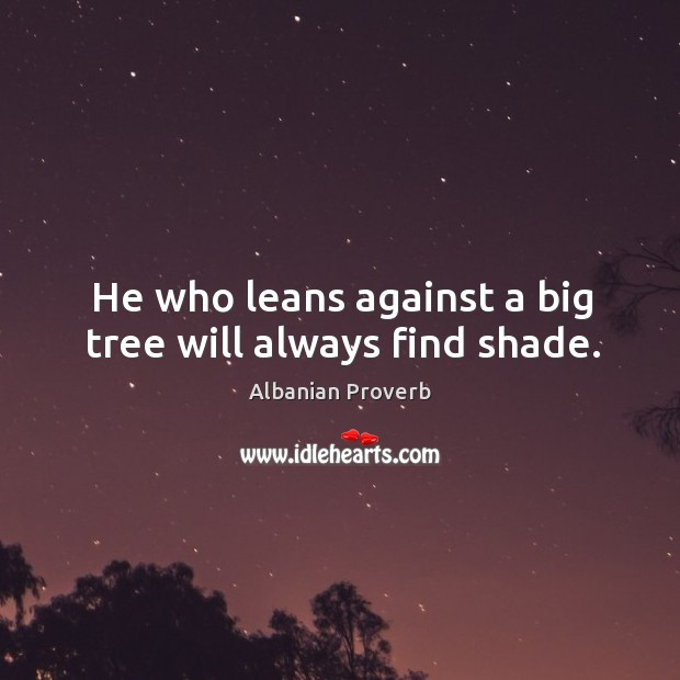 He who leans against a big tree will always find shade. Albanian Proverbs Image