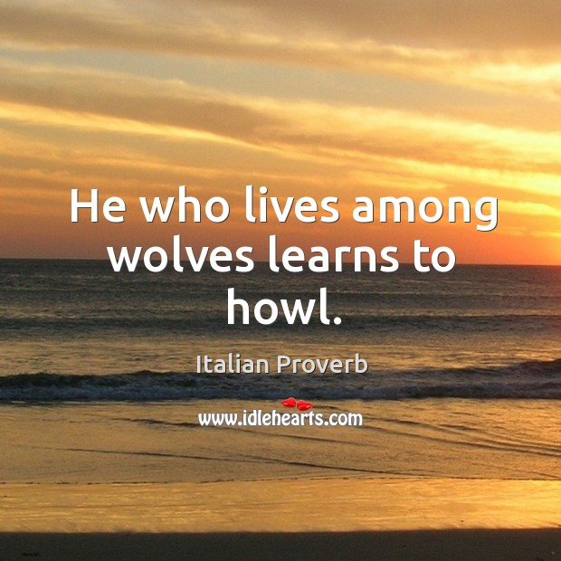 Image, He who lives among wolves learns to howl.