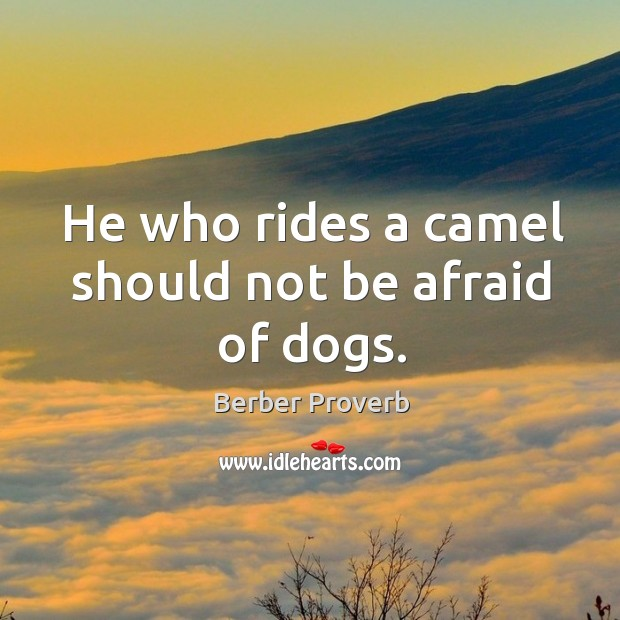 He who rides a camel should not be afraid of dogs. Berber Proverbs Image