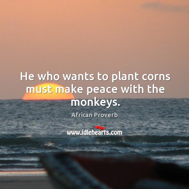 Image, He who wants to plant corns must make peace with the monkeys.
