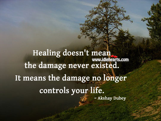 Image, Healing doesn't mean the damage never existed.