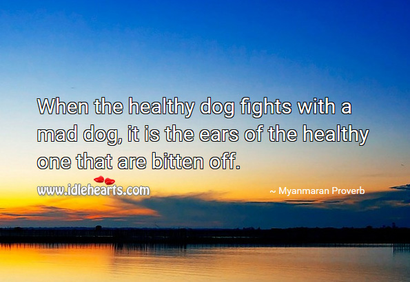 When the healthy dog fights with a mad dog, it is the ears of the healthy one that are bitten off. Myanmaran Proverbs Image