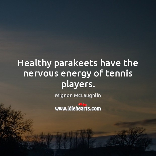 Healthy parakeets have the nervous energy of tennis players. Mignon McLaughlin Picture Quote