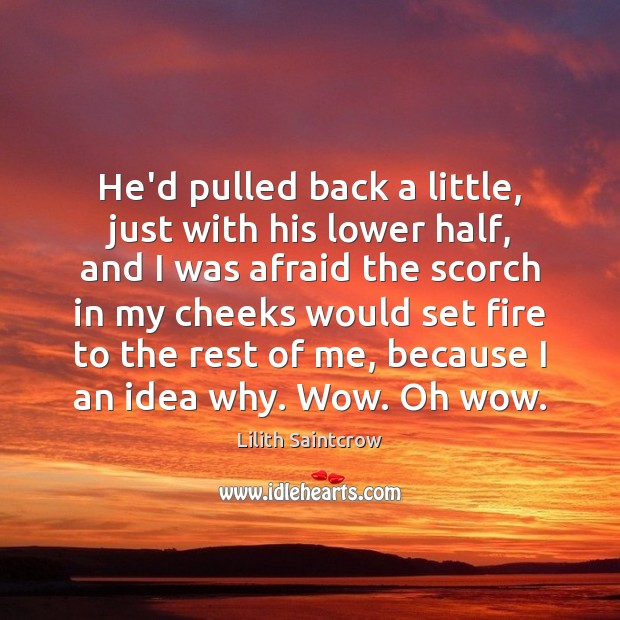 He'd pulled back a little, just with his lower half, and I Lilith Saintcrow Picture Quote