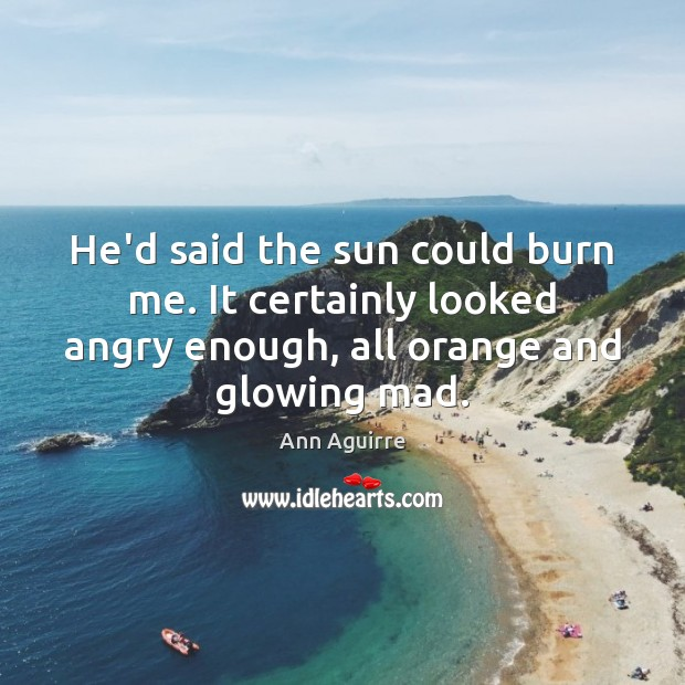 He'd said the sun could burn me. It certainly looked angry enough, Ann Aguirre Picture Quote