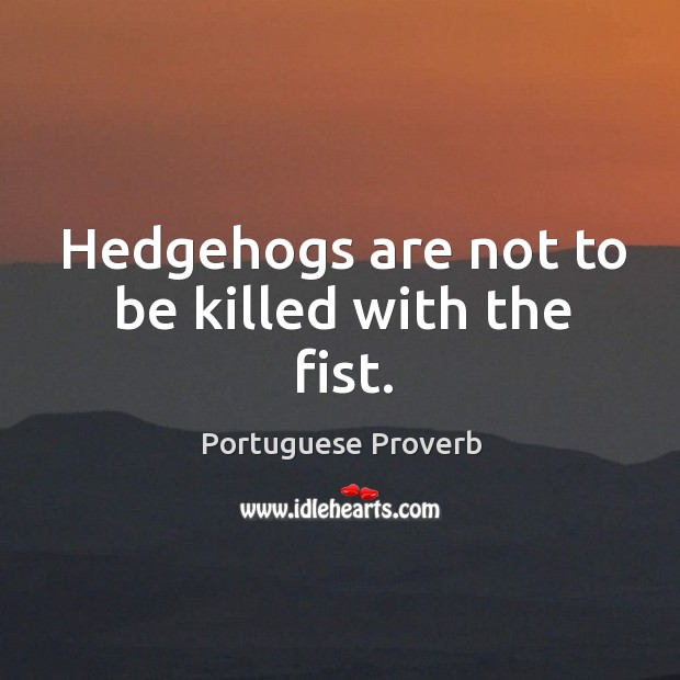 Hedgehogs are not to be killed with the fist. Image