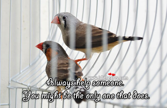 Image, Always help someone.