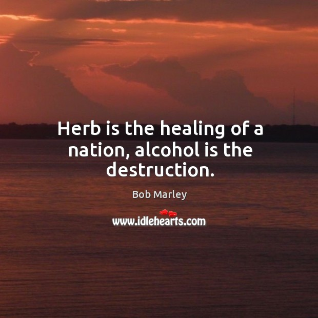 Herb is the healing of a nation, alcohol is the destruction. Alcohol Quotes Image