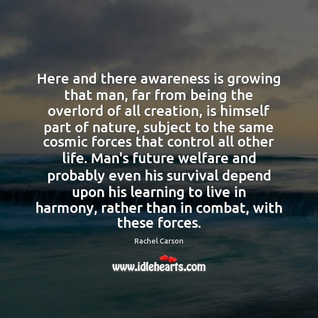 Here and there awareness is growing that man, far from being the Image