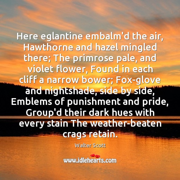 Here eglantine embalm'd the air, Hawthorne and hazel mingled there; The primrose Walter Scott Picture Quote