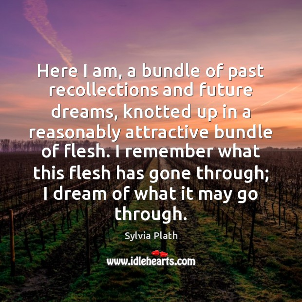 Image, Here I am, a bundle of past recollections and future dreams, knotted