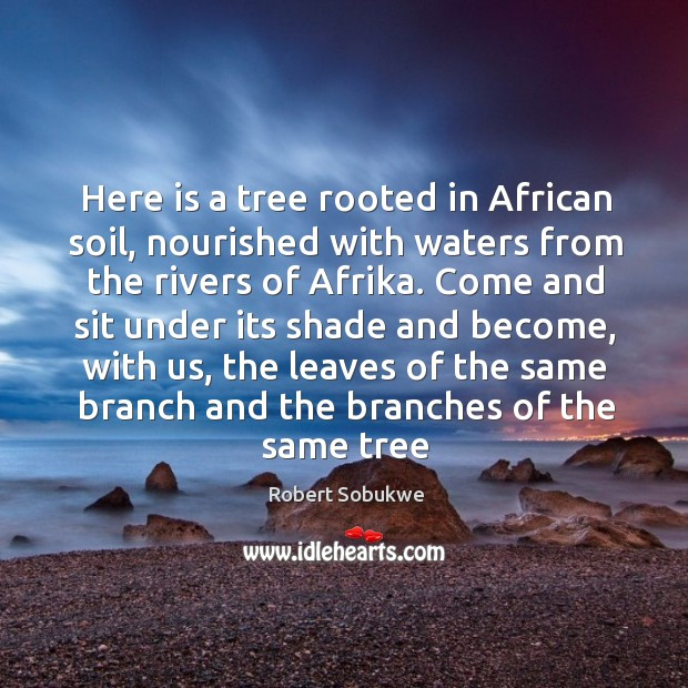 Here is a tree rooted in African soil, nourished with waters from Image