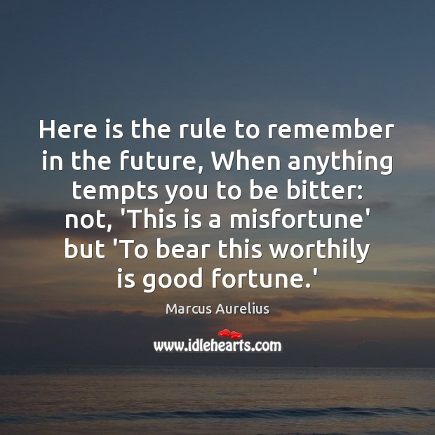 Image, Here is the rule to remember in the future, When anything tempts