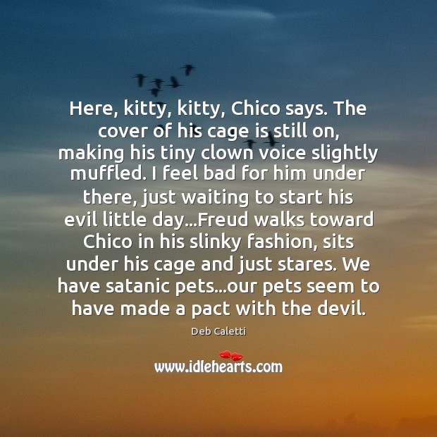 Here, kitty, kitty, Chico says. The cover of his cage is still Deb Caletti Picture Quote