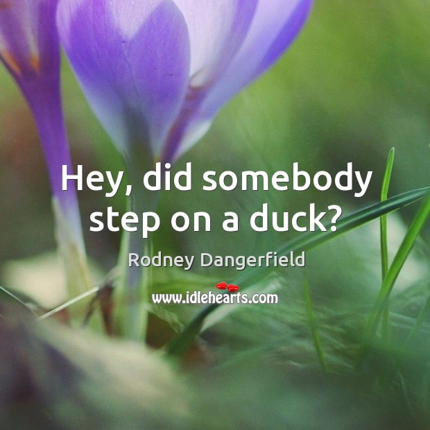 Hey, did somebody step on a duck? Image