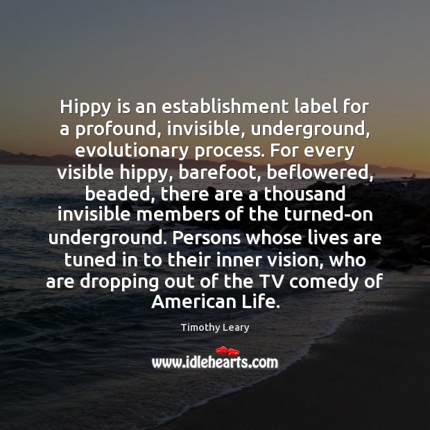 Image, Hippy is an establishment label for a profound, invisible, underground, evolutionary process.