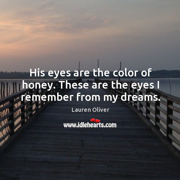 Image, His eyes are the color of honey. These are the eyes I remember from my dreams.
