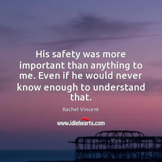 His safety was more important than anything to me. Even if he Rachel Vincent Picture Quote