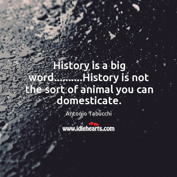 History is a big word……….History is not the sort of animal you can domesticate. Antonio Tabucchi Picture Quote