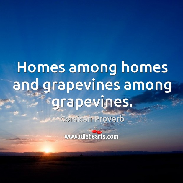 Homes among homes and grapevines among grapevines. Corsican Proverbs Image
