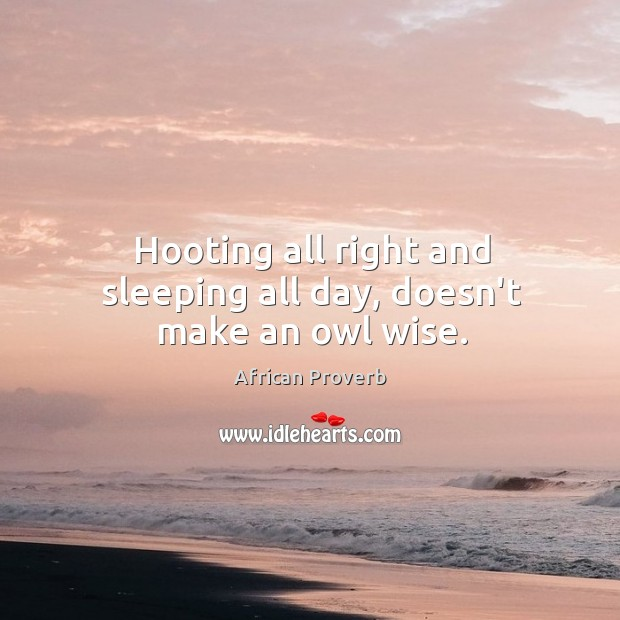 Image, Hooting all right and sleeping all day, doesn't make an owl wise.