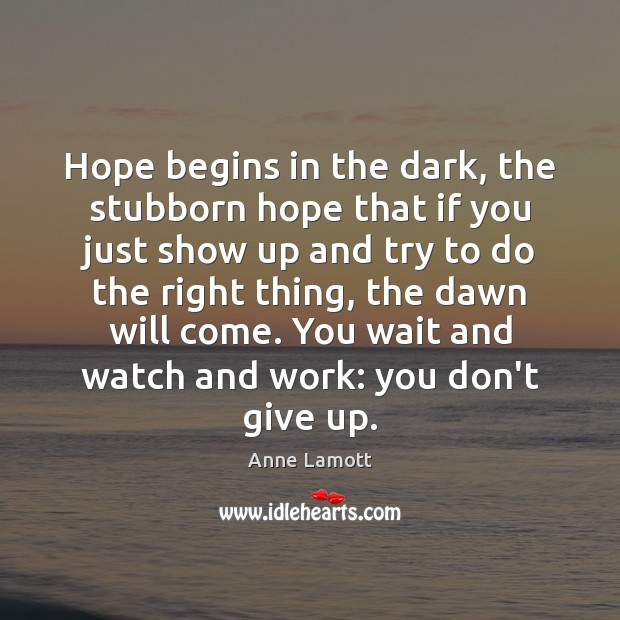 Hope begins in the dark, the stubborn hope that if you just Anne Lamott Picture Quote