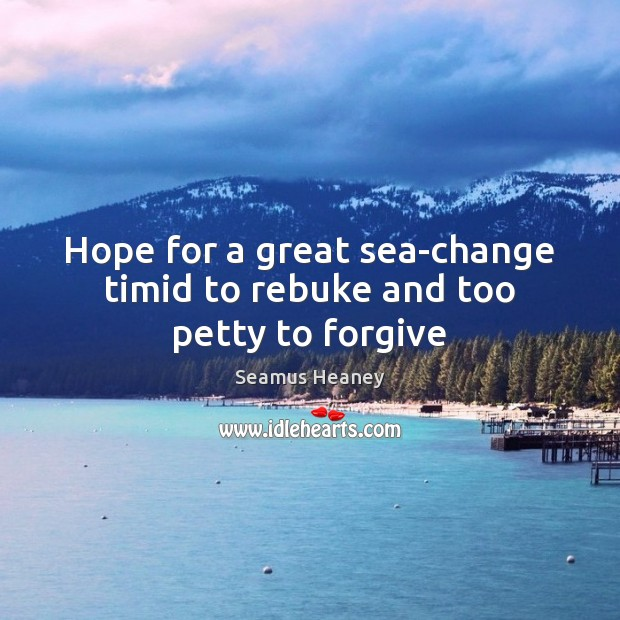 Hope for a great sea-change timid to rebuke and too petty to forgive Seamus Heaney Picture Quote