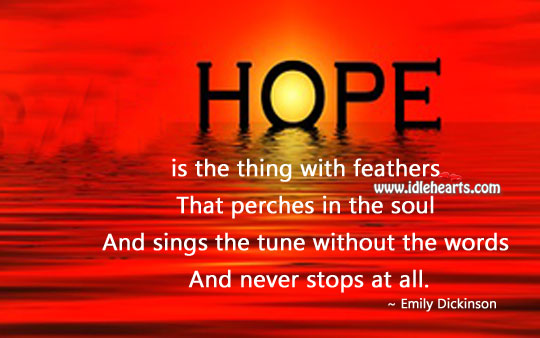 Image, Hope never stops