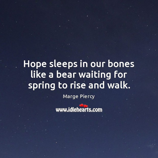 Hope sleeps in our bones like a bear waiting for spring to rise and walk. Image