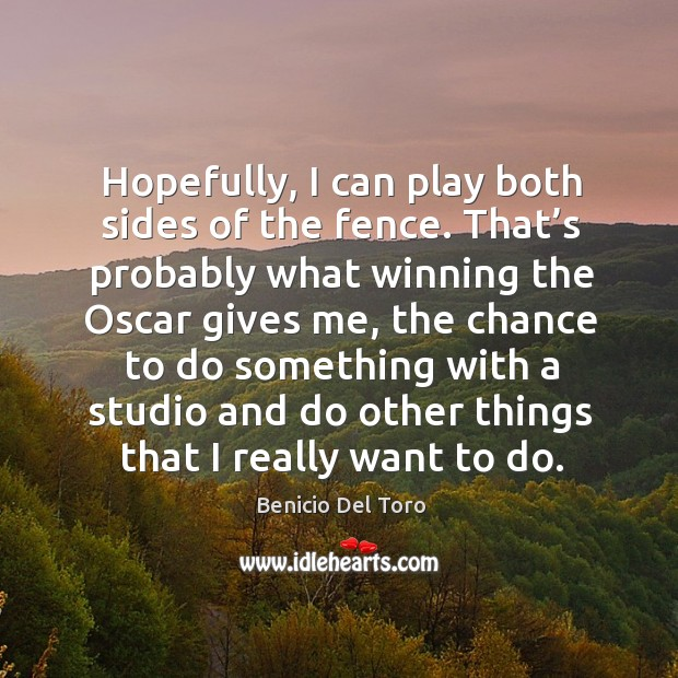 Hopefully, I can play both sides of the fence. Benicio Del Toro Picture Quote
