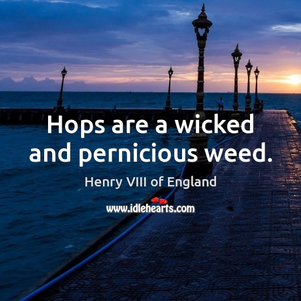 Hops are a wicked and pernicious weed. Henry VIII of England Picture Quote