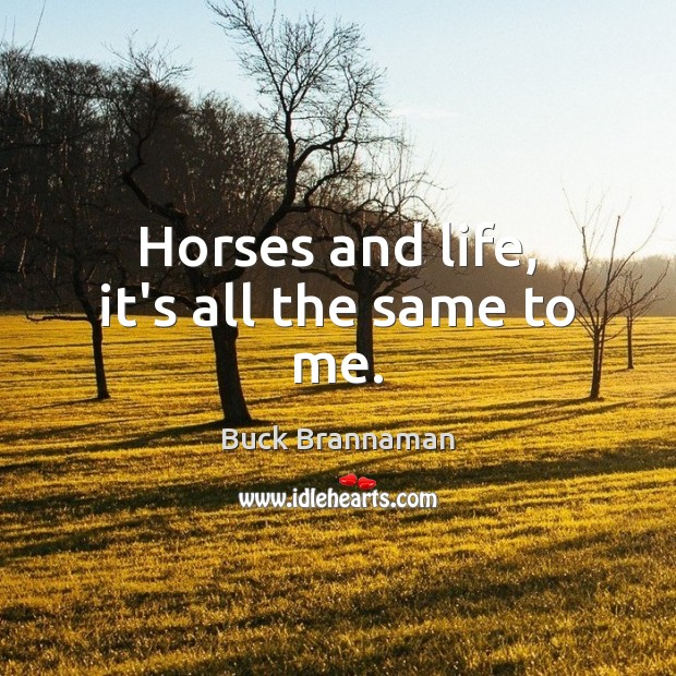 Image, Horses and life, it's all the same to me.