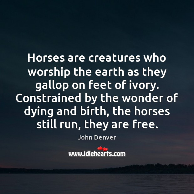 Horses are creatures who worship the earth as they gallop on feet John Denver Picture Quote