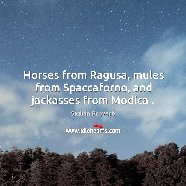 Image, Horses from ragusa, mules from spaccaforno, and jackasses from modica .