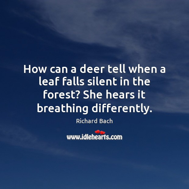 Image, How can a deer tell when a leaf falls silent in the