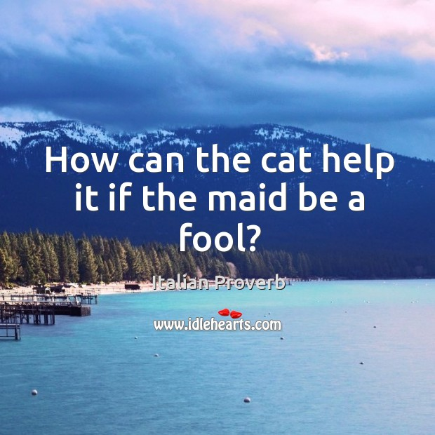 How can the cat help it if the maid be a fool? Image