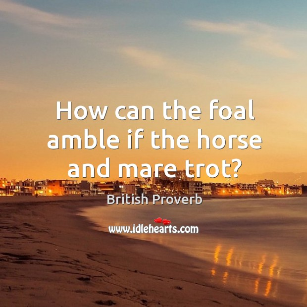 Image, How can the foal amble if the horse and mare trot?
