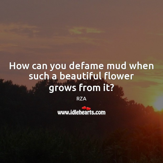 How can you defame mud when such a beautiful flower grows from it? RZA Picture Quote