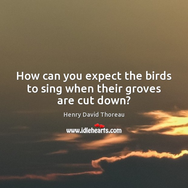 How can you expect the birds to sing when their groves are cut down? Image