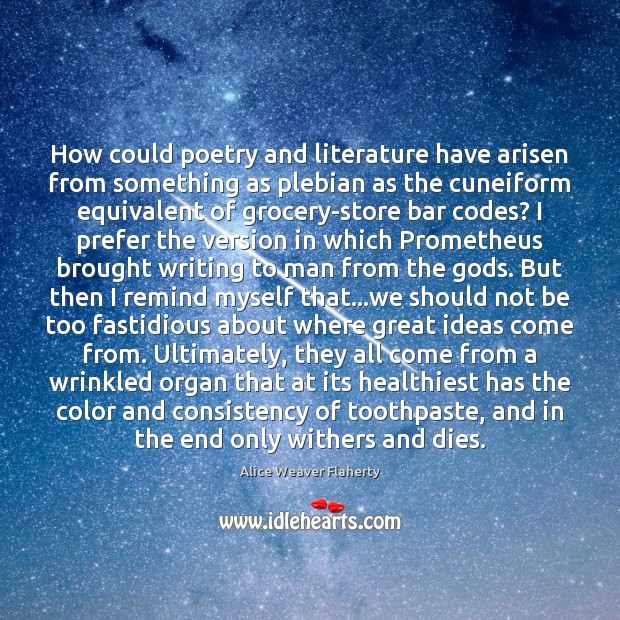 Image, How could poetry and literature have arisen from something as plebian as