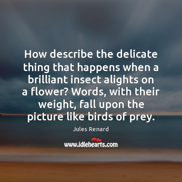 How describe the delicate thing that happens when a brilliant insect alights Jules Renard Picture Quote